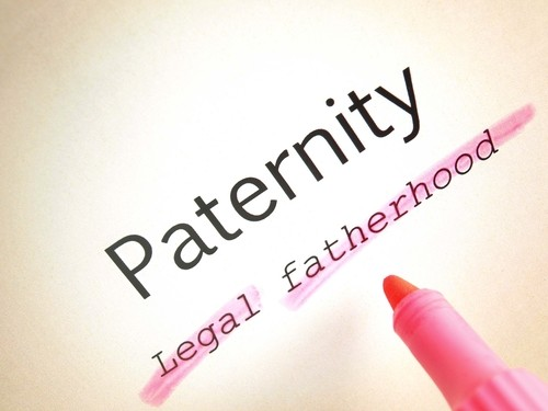 Florida Paternity Lawyer